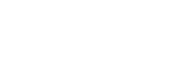 trout creek logo W